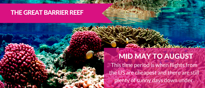 Barrier Reef - How to Afford an Epic Vacation on a Less Than Epic Budget