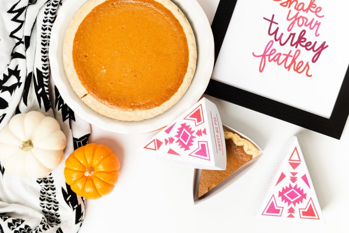 Cricut projects_Thanksgiving 2015-19 web